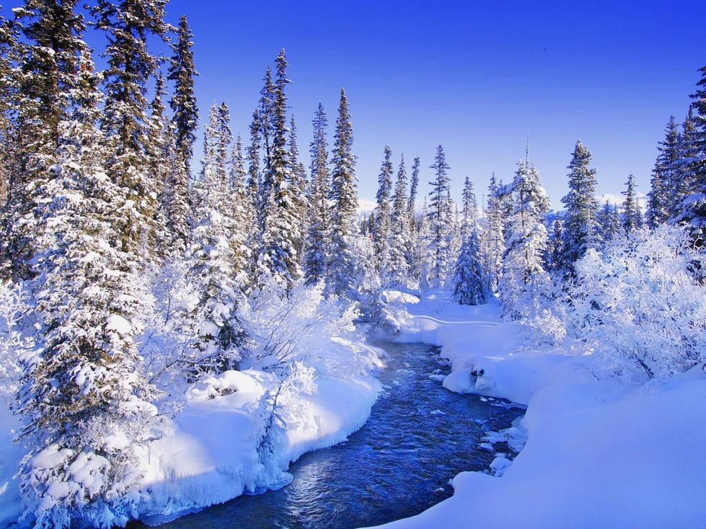 Ранняя зима